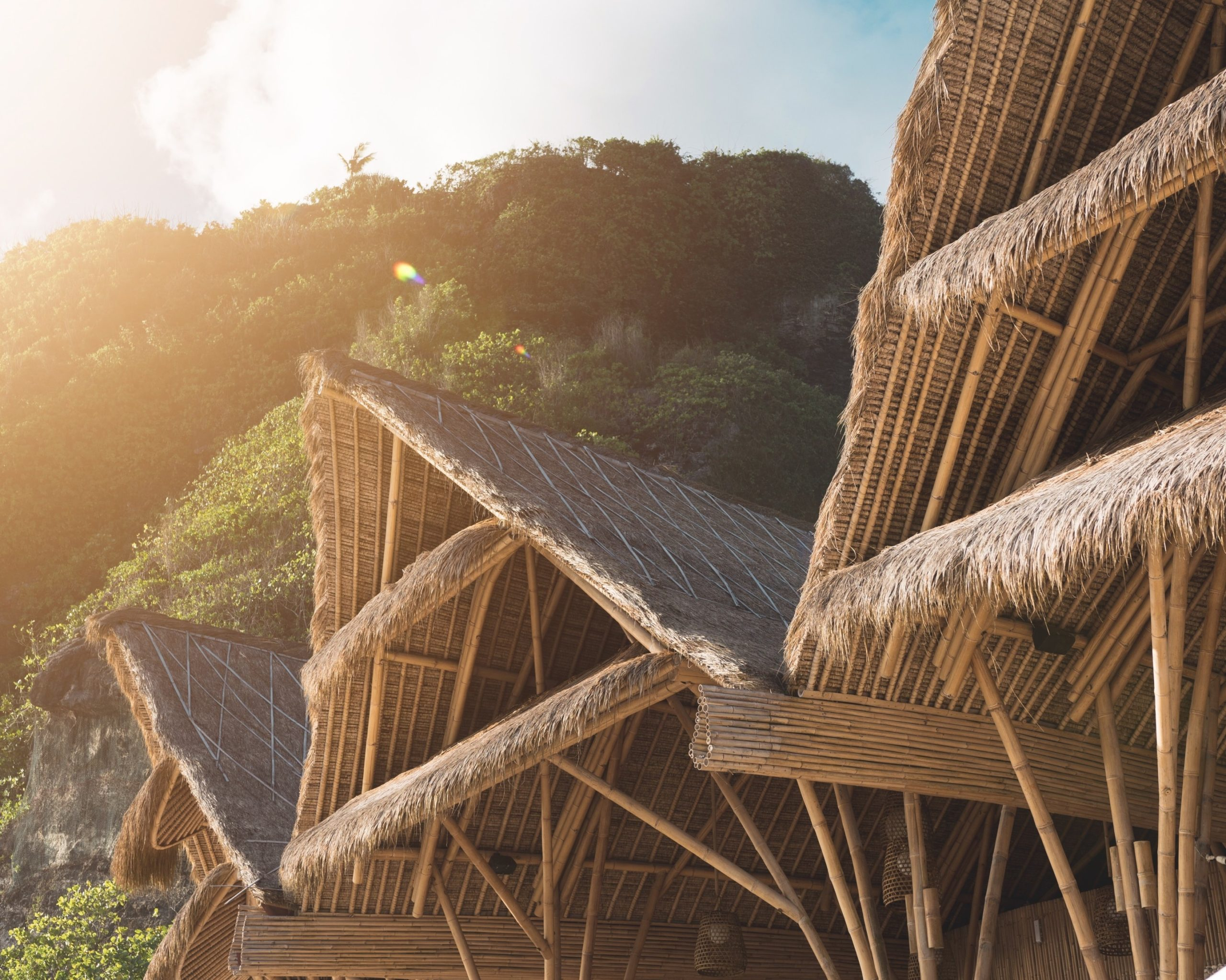 Eco-Friendly Construction: Bamboo as a Construction Material