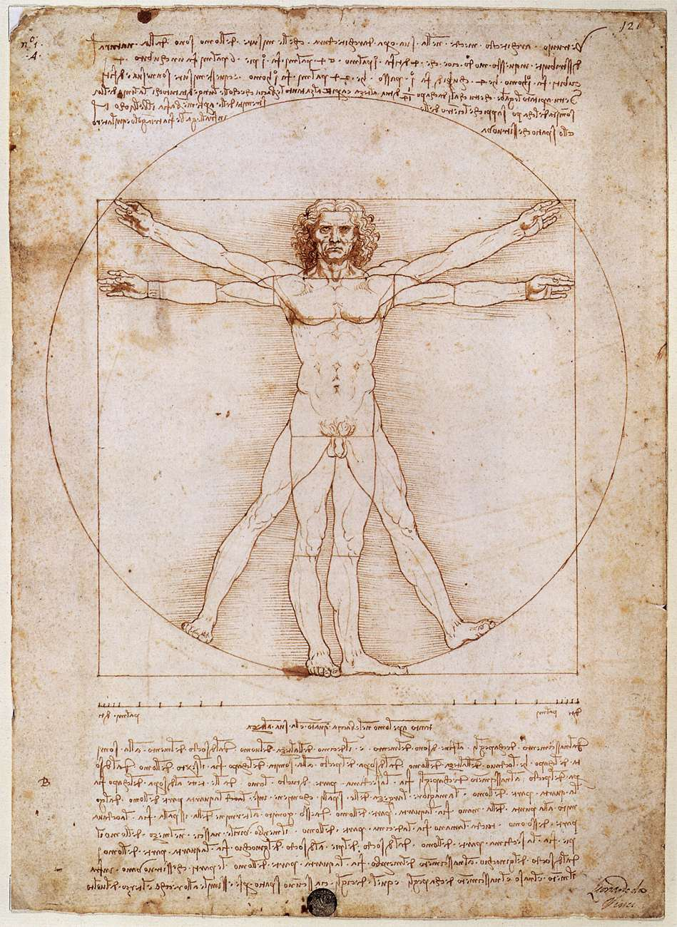 The Vitruvian Man: A guide to proportion and symmetry