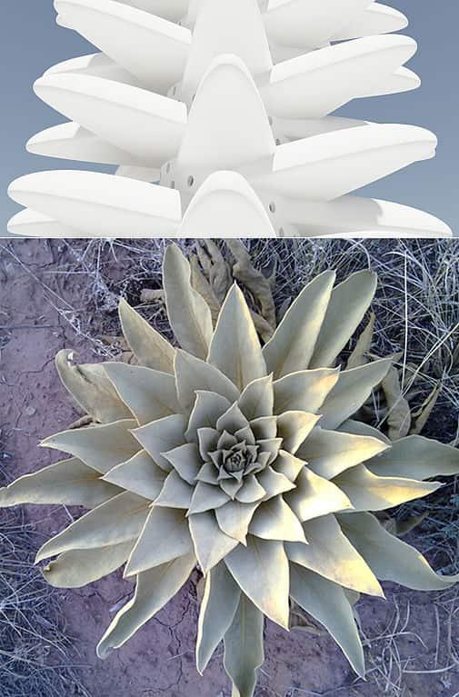 biomimicry in architecture - 02